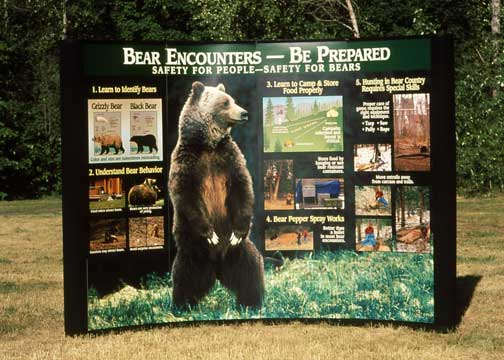 Big-Bear-Display_Jackson_2