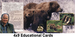 4x9EducationalCards