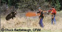Copyright Chuck Bartlebaugh, CFWI